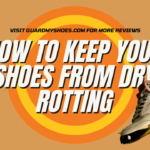 (Protection tips) To Keep Your Shoes From Dry Rotting